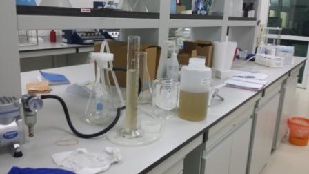 Type of Laboratories